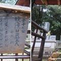 Photos: 妙成寺(羽咋市)妙心院日奠上人墓