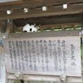 写真: 氣多大社(羽咋市)(ΦωΦ)