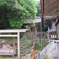 写真: 氣多大社(羽咋市)若宮神社