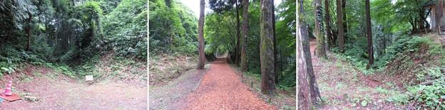 七尾城(石川県)堀切