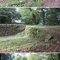 写真: 七尾城(石川県)温井屋敷