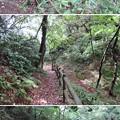 写真: 七尾城(石川県)二の丸大堀切