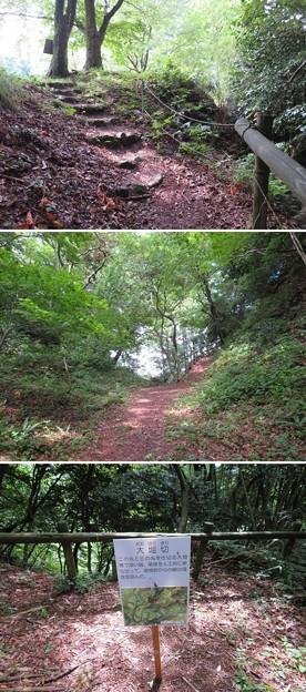七尾城(石川県)三の丸大堀切
