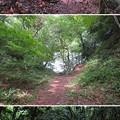 写真: 七尾城(石川県)三の丸大堀切