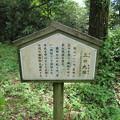 写真: 七尾城(石川県)三の丸