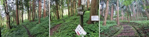 Photos: 七尾城(石川県)寺屋敷