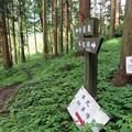 写真: 七尾城(石川県)寺屋敷