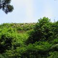 写真: 七尾城(石川県)本丸