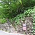 Photos: 荻町城(白川村)大手