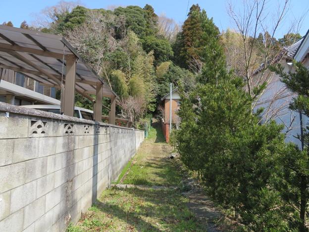 庁南城(長生郡長南町)西側面尾根/神明神社