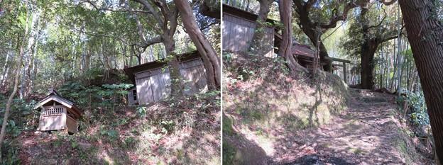 庁南城(長生郡長南町)西側面尾根郭/神明神社