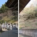 Photos: 庁南城(長生郡長南町)/長久寺