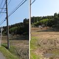 Photos: 庁南城(長生郡長南町)長久寺北