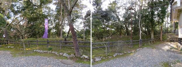 Photos: 大多喜城(千葉県夷隅郡大多喜町)土塁