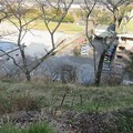 Photos: 大多喜城(千葉県夷隅郡大多喜町)北東・二の丸・東