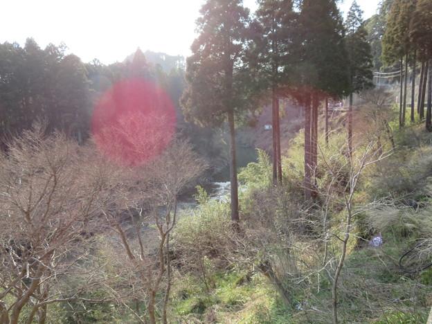 大多喜城(千葉県夷隅郡大多喜町)夷隅川