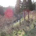 写真: 大多喜城(千葉県夷隅郡大多喜町)夷隅川