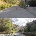 Photos: 真里谷城(木更津市)