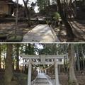 Photos: 真里谷城(木更津市)城山神社