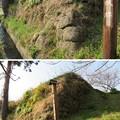Photos: 佐貫城(富津市)櫓台跡