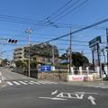Photos: 小金城(松戸市)大谷口
