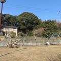 Photos: 小金城(松戸市)馬場山