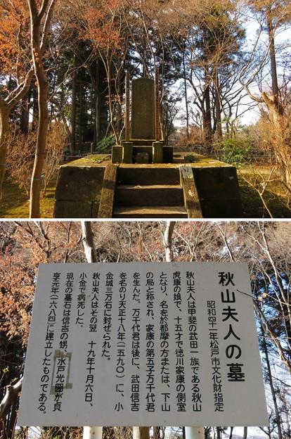 本土寺(松戸市)秋山夫人墓