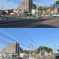 Photos: 根木内城(松戸市)南西より