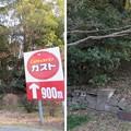 Photos: 根木内城(松戸市)断面