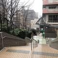 Photos: 相模台城(松戸市営 松戸中央公園)