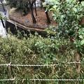 相模台城(松戸市営 松戸中央公園)大堀切