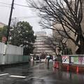 相模台城(松戸市。東京聖徳学園)