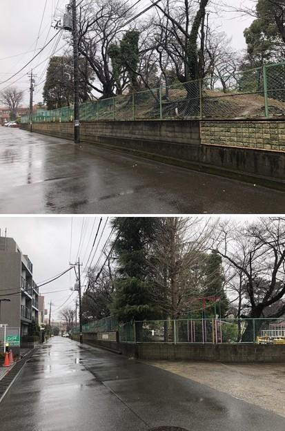 Photos: 相模台城(松戸市立相模台小学校)土塁