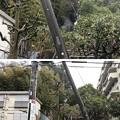 Photos: 相模台城(松戸市)相模台公園南麓