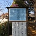 Photos: 矢切神社(松戸市)