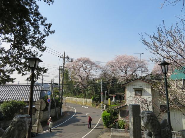 18.03.27.矢切神社(松戸市)より矢喰村庚申塚
