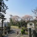 Photos: 18.03.27.矢切神社(松戸市)より矢喰村庚申塚