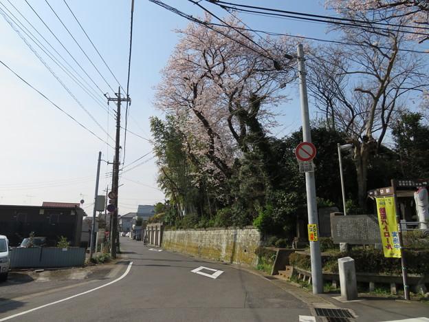 18.03.27.矢喰村庚申塚(松戸市)