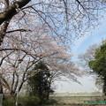 18.03.27.第二次国府台合戦場/野菊苑(松戸市)