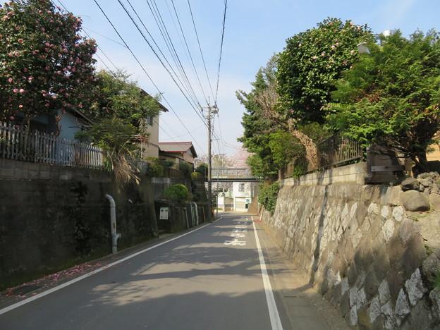 第二次国府台合戦場/大坂(松戸市)