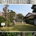 Photos: 第二次国府台合戦場/西蓮寺(松戸市)野菊の墓文学碑