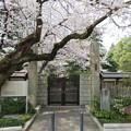 Photos: 18.03.27.総寧寺(市川市)山門?