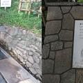国府台城(市川市)羅漢の井