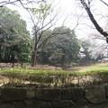 Photos: 18.03.27.国府台城(市川市)本丸・土塁