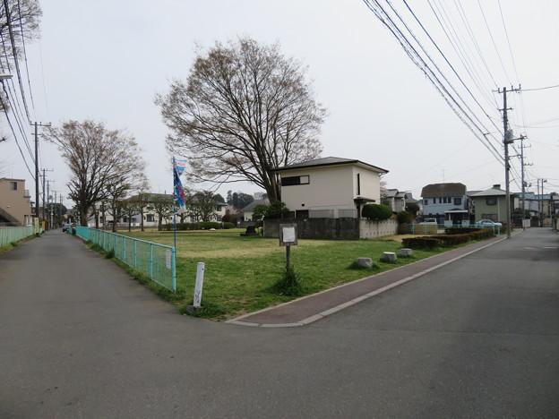 下総国分尼寺跡(市川市営 下総国分尼寺跡公園)