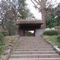 写真: 戸定邸(松戸市営 戸定が丘歴史公園)/松戸城外郭