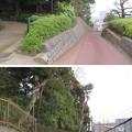 Photos: 戸定邸(松戸市営 戸定が丘歴史公園)/松戸城外郭