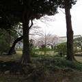 Photos: 松戸城(千葉大学松戸キャンパス)中心郭