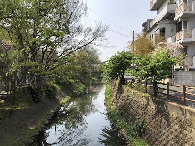 松戸宿(千葉県)陣屋口橋・坂川・南
