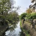 Photos: 松戸宿(千葉県)陣屋口橋・坂川・南
